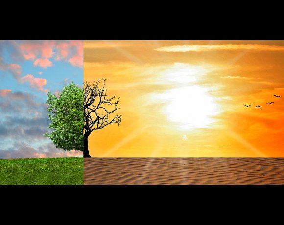 Fünf vor Zwölf? – Fokus Umwelt