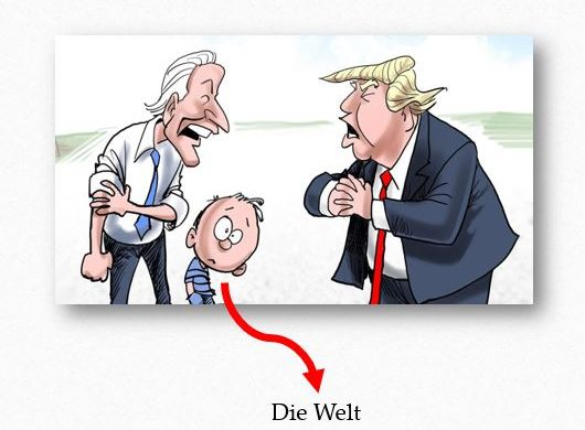 Erklärung der unerklärlichen US-Wahl 2020